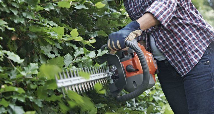 How To Use a Hedge Trimmer?