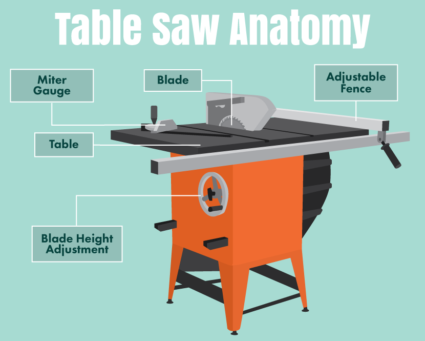 Table saw anatomy