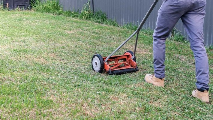 Best Manual Lawn Mower (Hand Push Mowers)