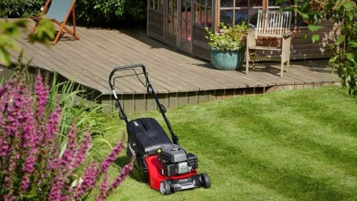 Best Petrol Lawn Mower With Rear Roller (Reviews)
