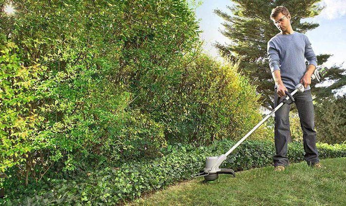 Best Cordless Strimmer Reviews