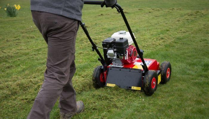 Do I Need a Lawn Scarifier?