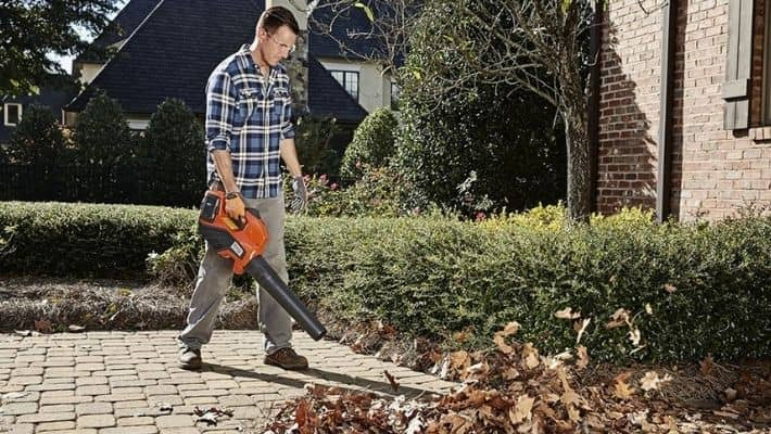 Cheap Leaf Blowers