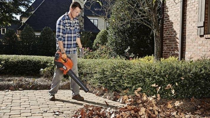 Cheap Leaf Blowers