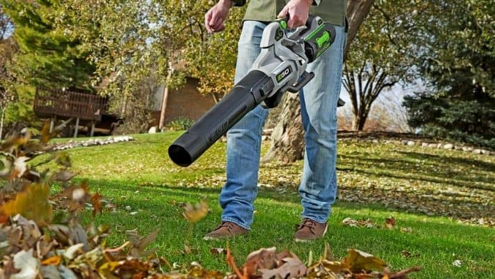 Best Cordless Leaf Blower UK (Reviews)