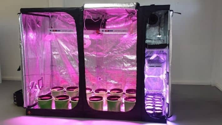 Complete Led Grow Tent Kits UK (Hydroponic Grow System)