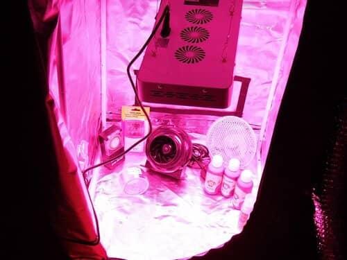 GoodGrow LED Grow Tent Kit